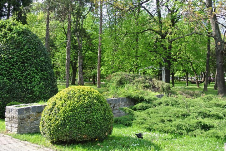 Parcul Central din Timisoara
