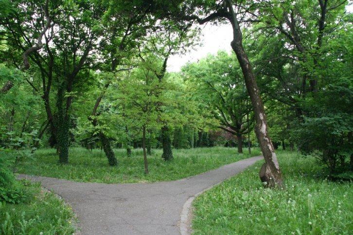 Parcul Botanic din Timisoara