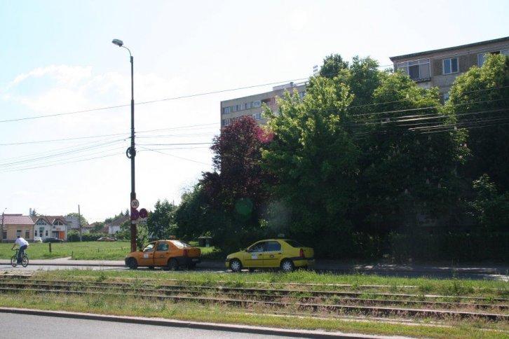 Statie taxi - Balta Verde