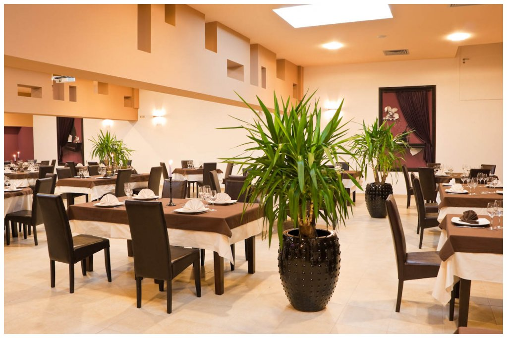 Restaurant Velvet Music