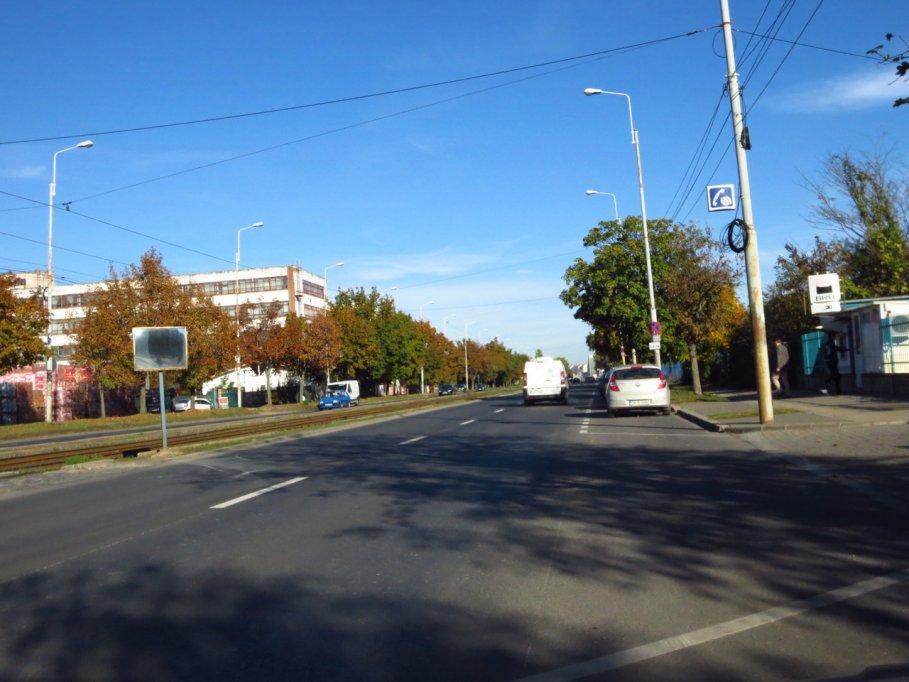 Calea Buziasului din Timisoara