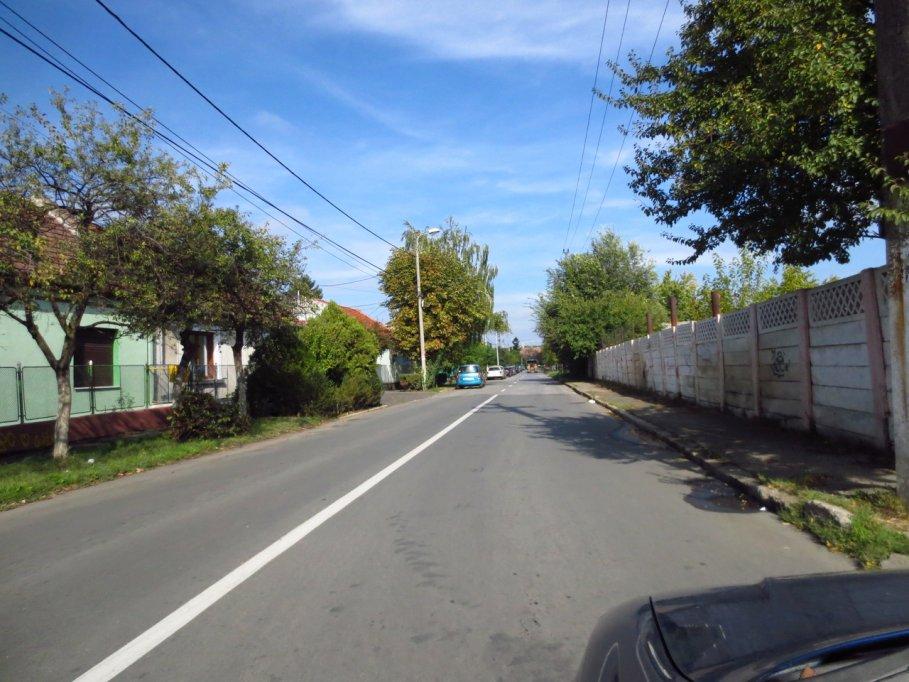 Strada Albinelor