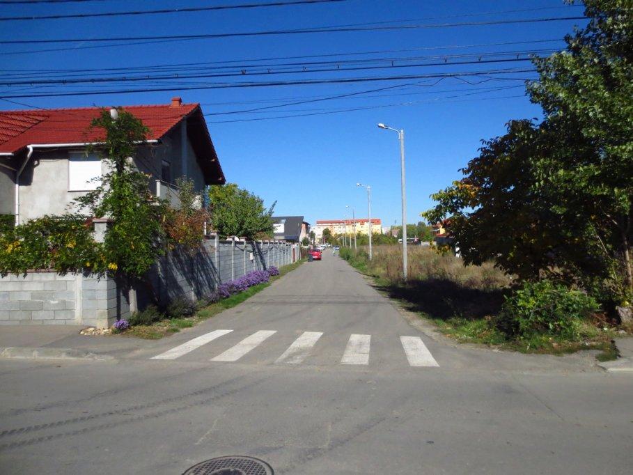 Strada Ana Lugojana