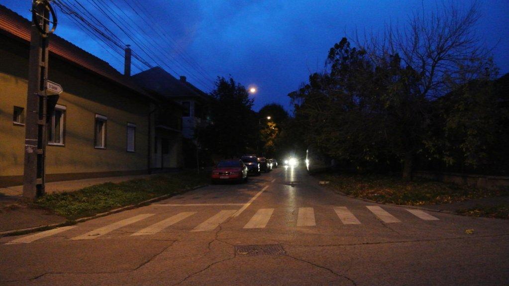 Strada Caprioarei