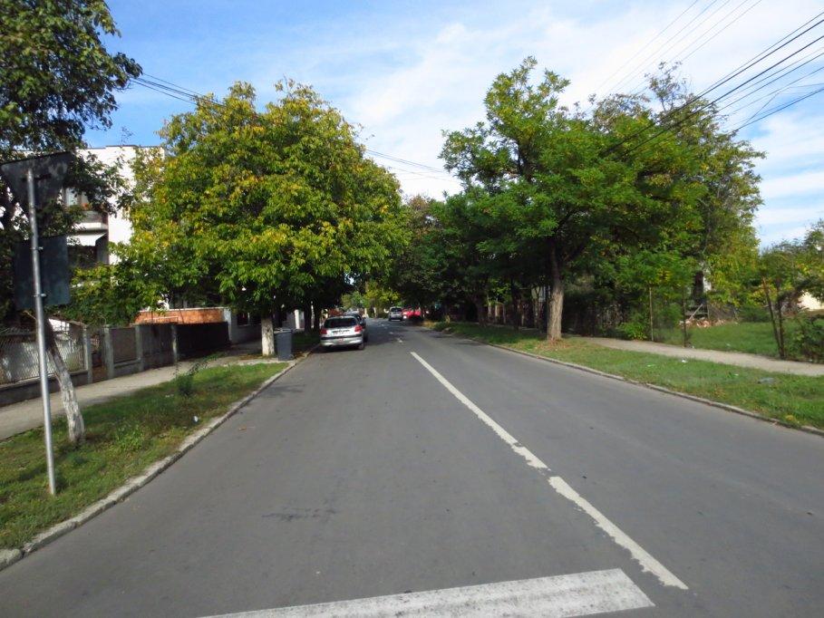 Strada Ion Roata