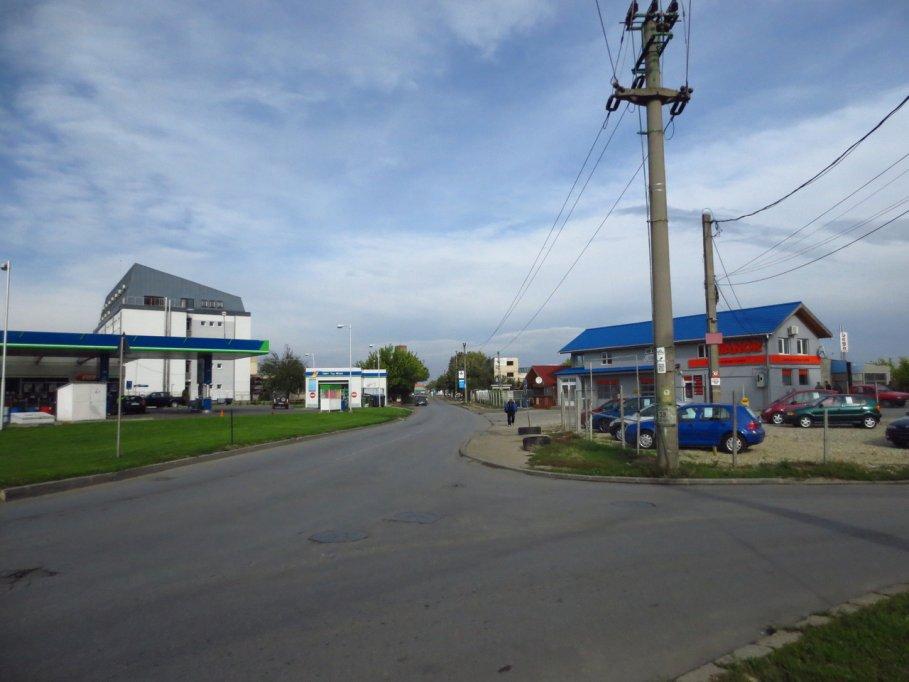 strada marginii din timisoara