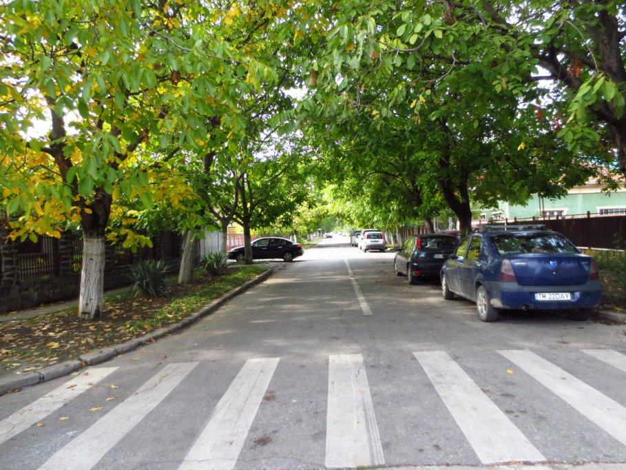 strada olanda din timisoara