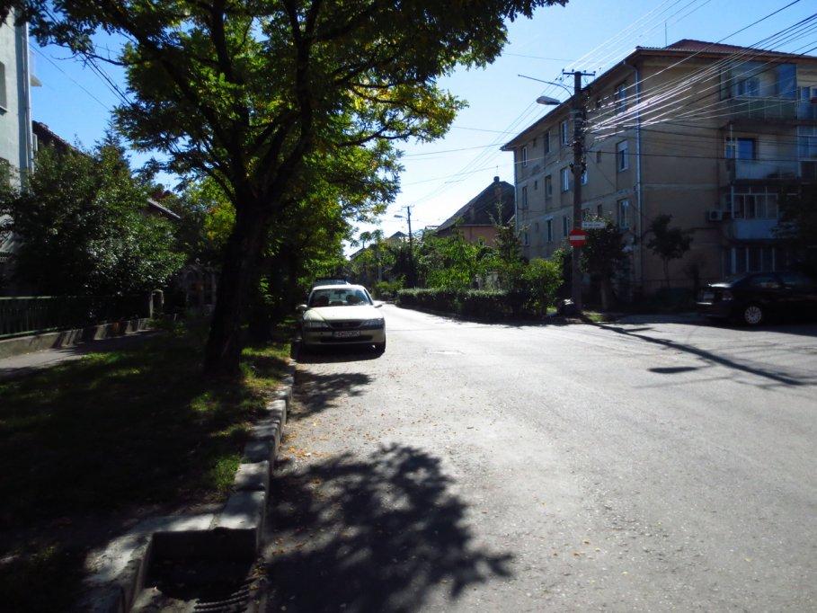 Strada Petre Ramneantu