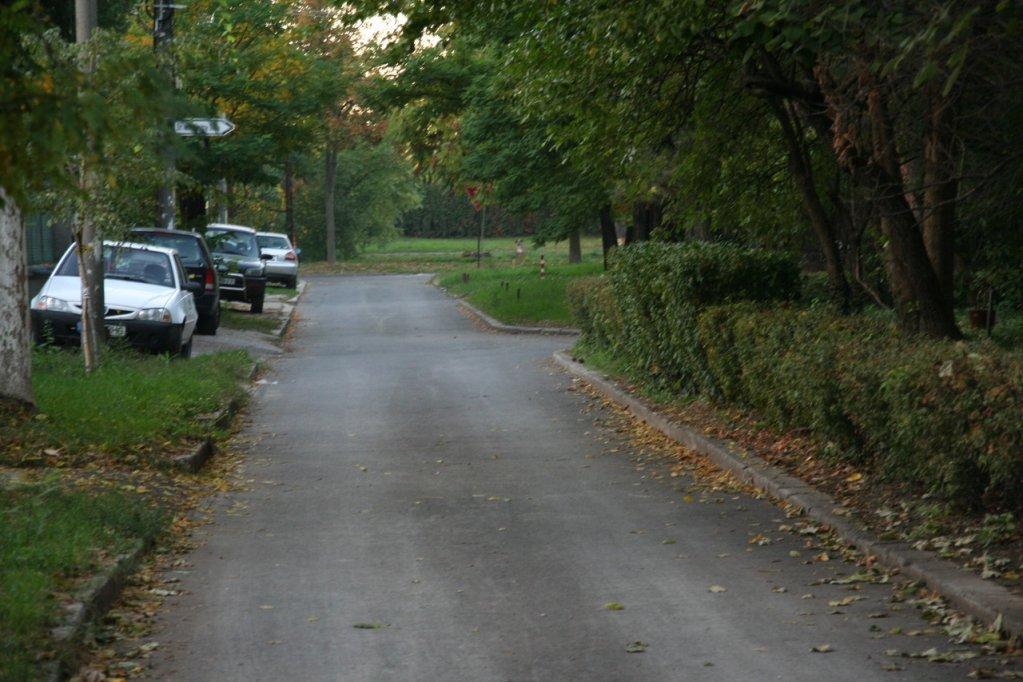 Strada Petru Sfetca