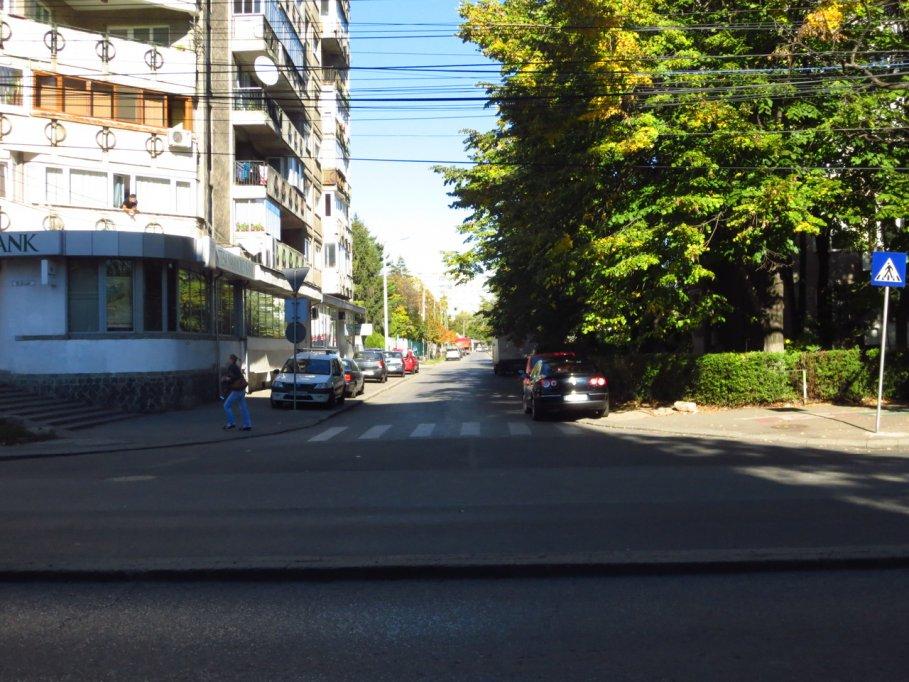 Strada Teiului