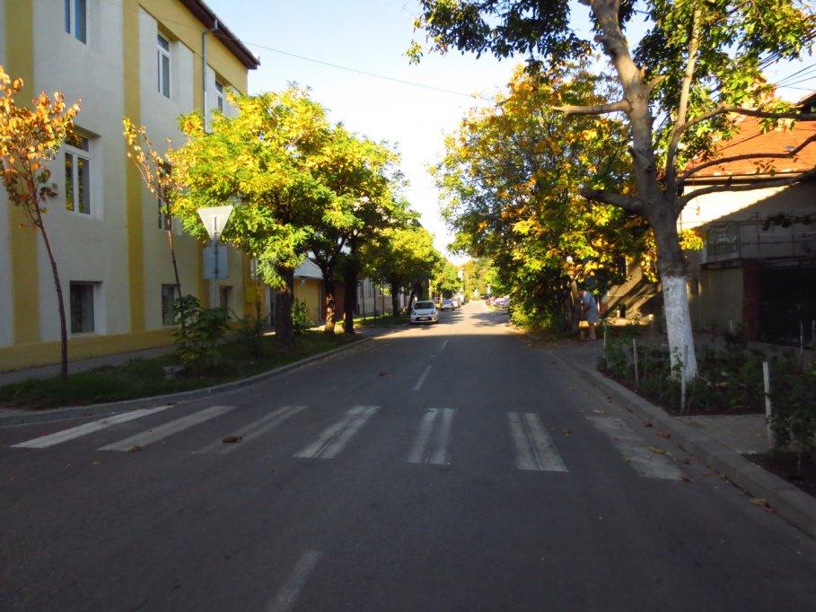 Strada Virtutii