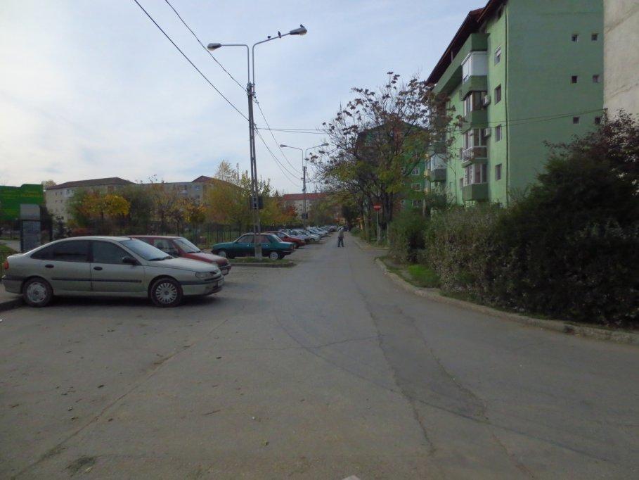 Aleea Cetinei