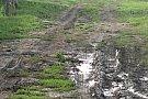 Timisoara intre civilizatie si primitiv
