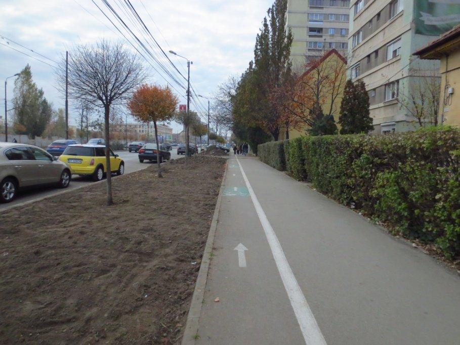 Pista bicicleta - Bulevardul Take Ionescu