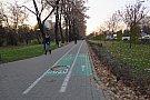 Pista bicicleta - Bulevardul Vasile Parvan