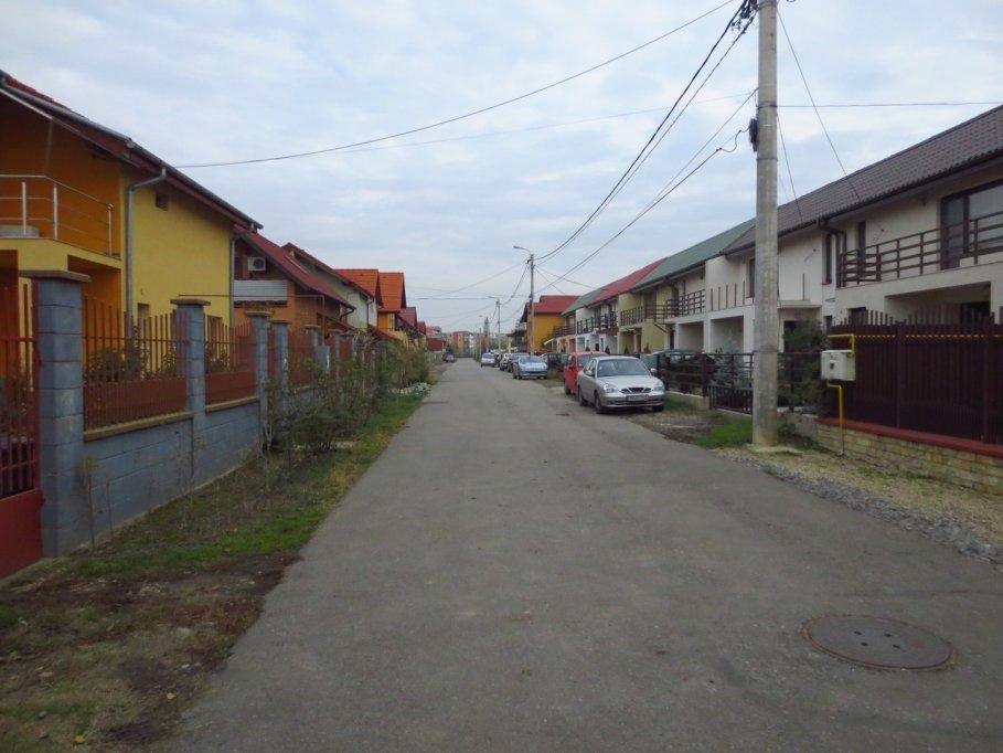 Strada Arinului