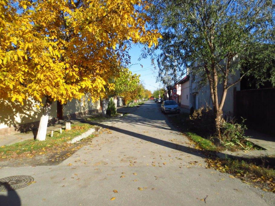 Strada Banul Severinului