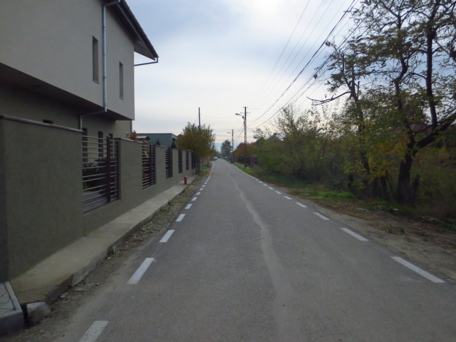 strada bistrei din timisoara