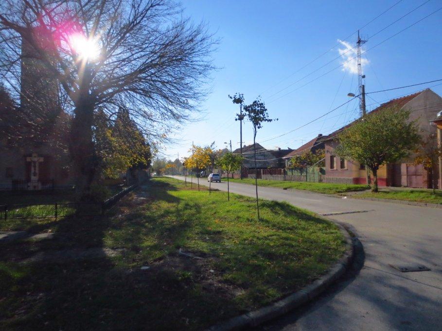 Strada C. A. Rosetti