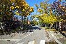 Strada Costinesti