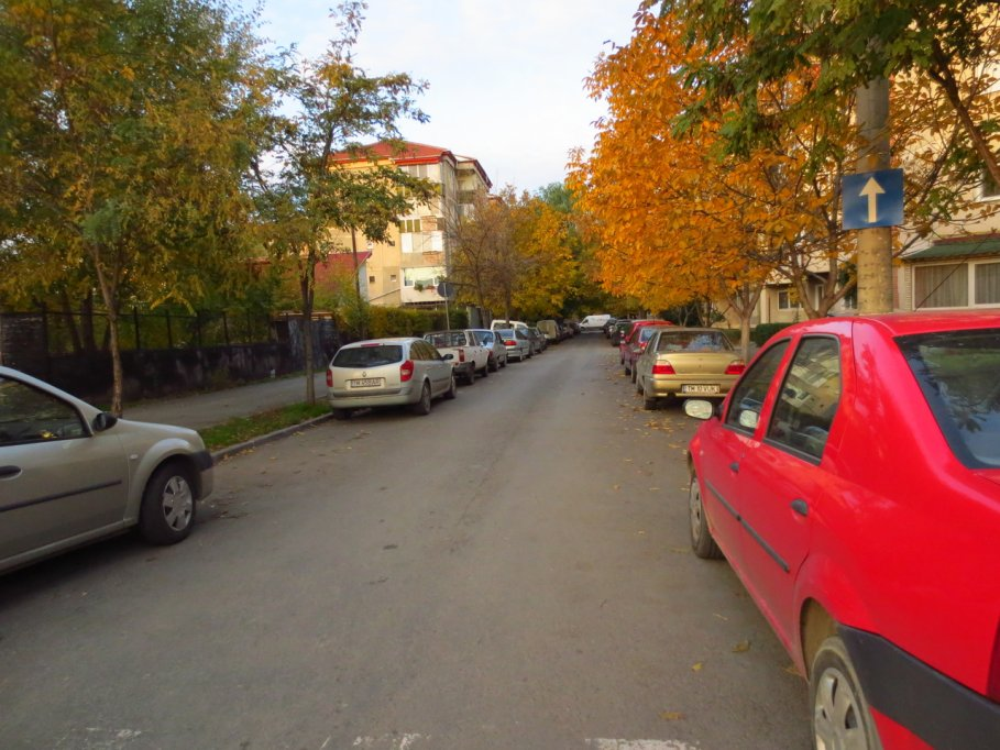 Strada Martir Gheorghe Nutu Iotcovici