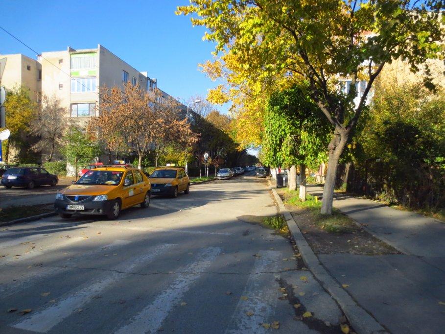 Strada Maslinului