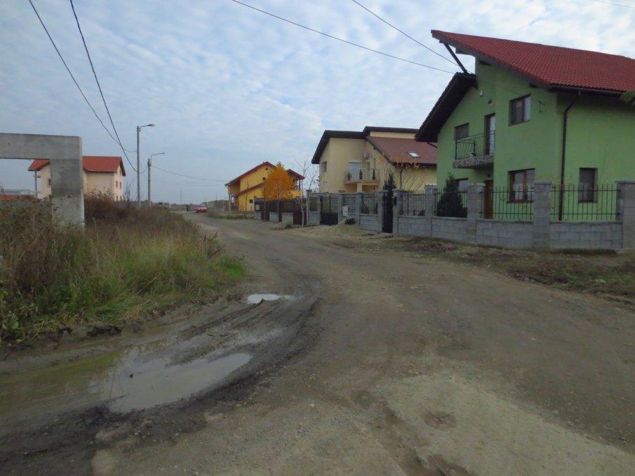 Strada Petuniei