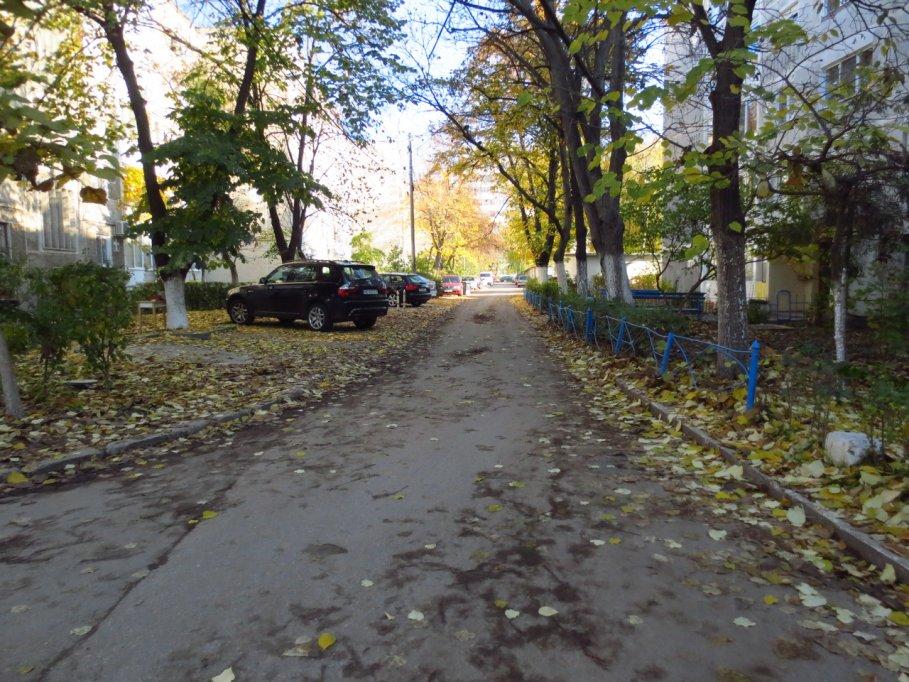 Strada Traian Novac