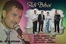 Adi Biboi