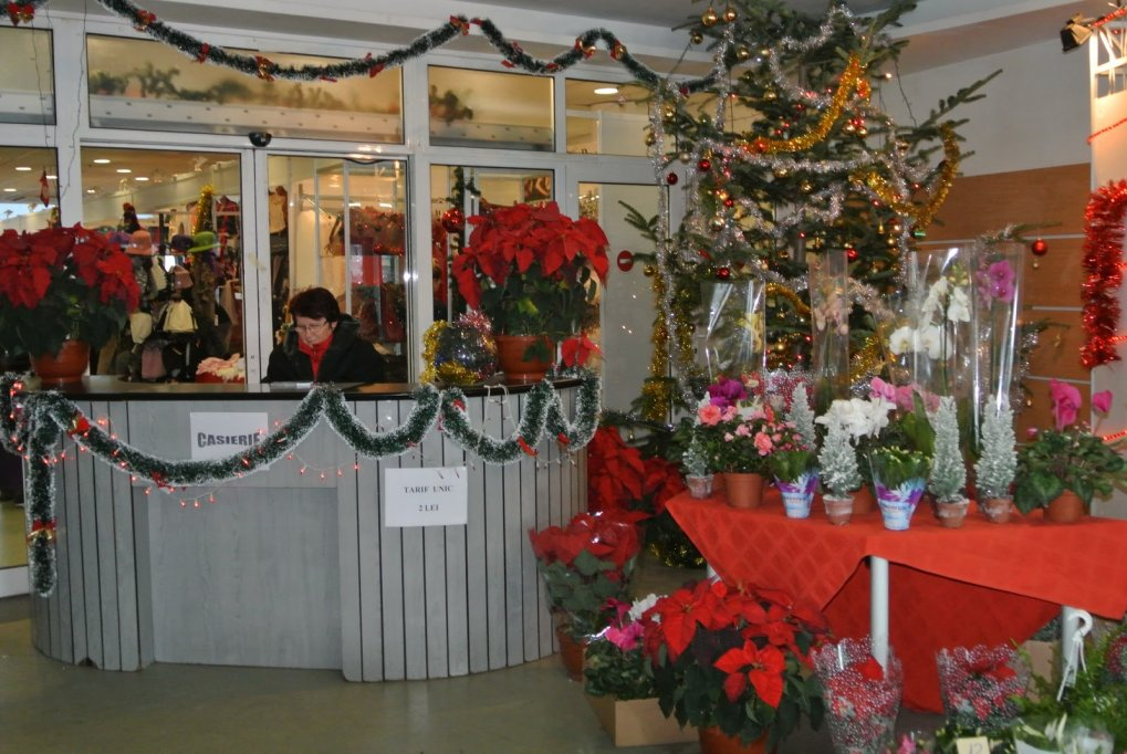 Targul Cadourilor de Iarna 2012