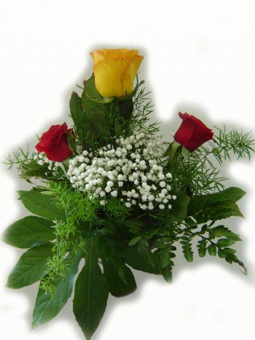 Floraria Crinul