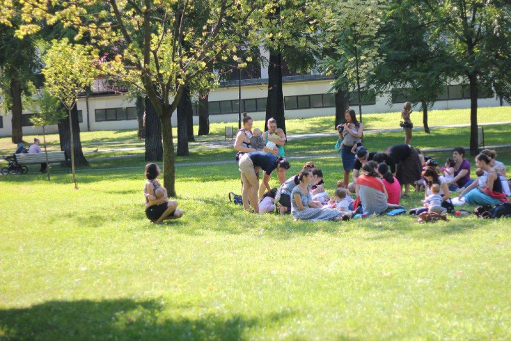 Saptamana Mondiala a Alaptarii la Timisoara