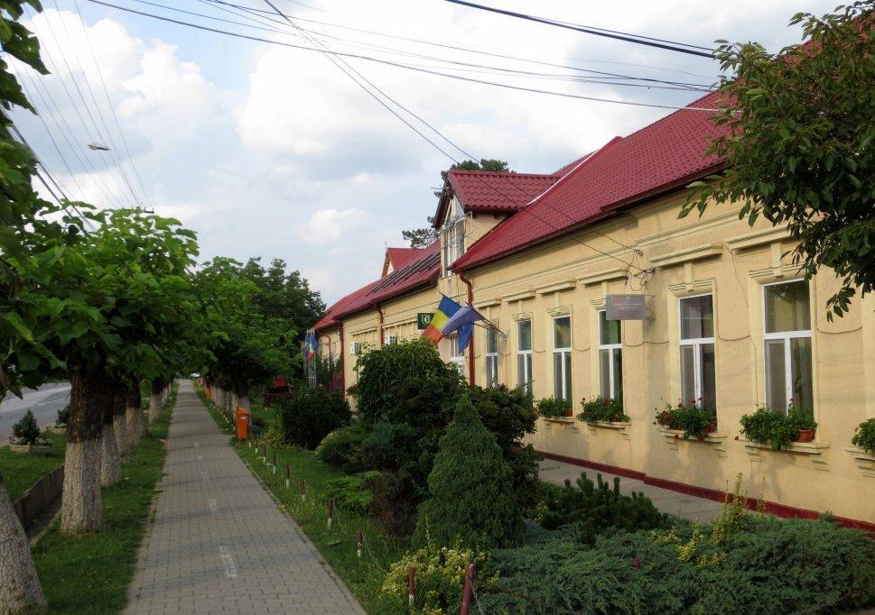 Primaria Dumbravita