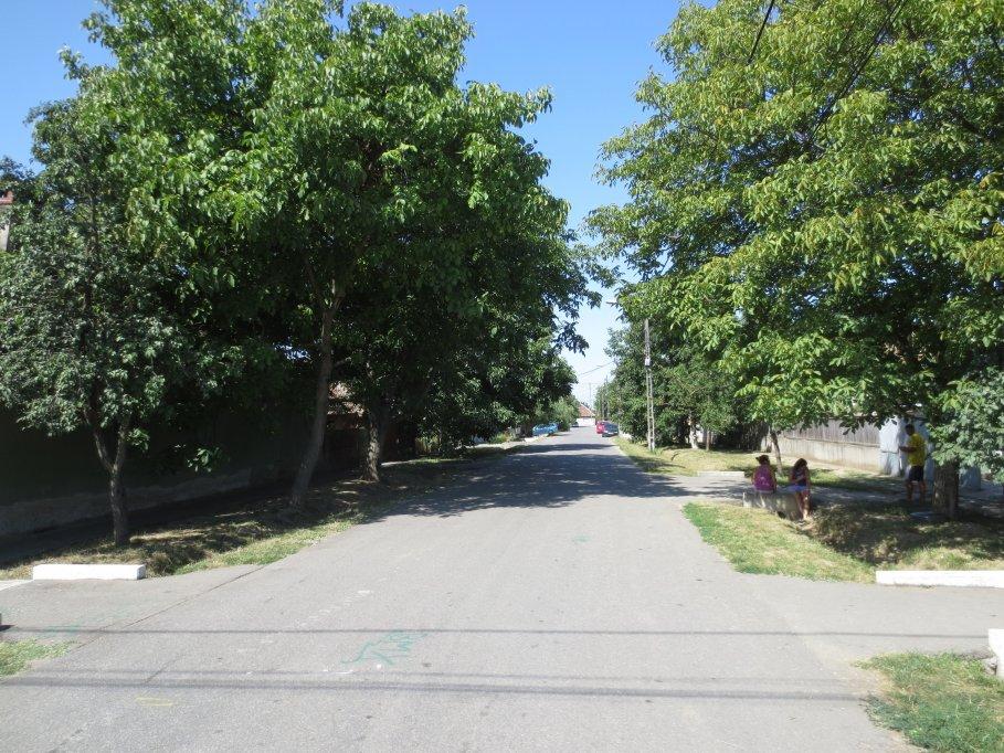 Strada Retezat