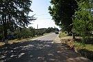 Strada Trandafirilor