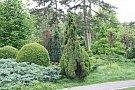 Ziua Gradinii Botanice