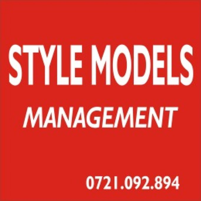Style Models