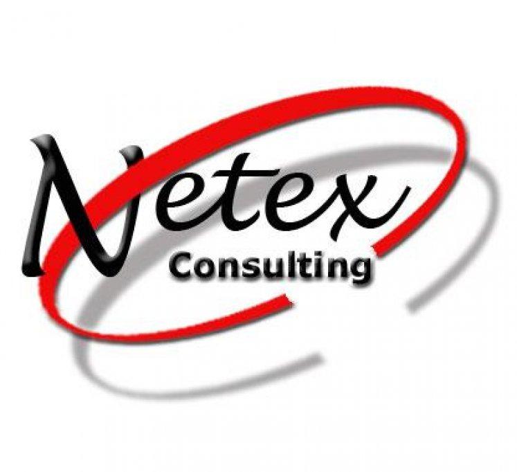 Netex Consulting