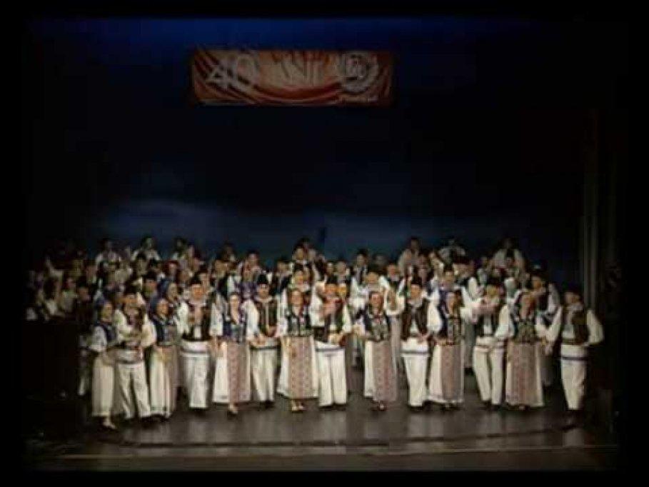 Ansamblul Folcloric Timisul