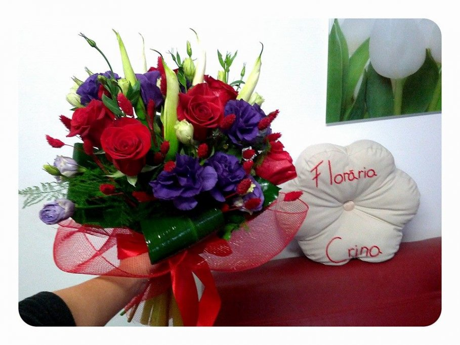 Floraria Crina