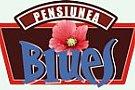 Pensiunea Blues