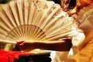 Cafe Flamenco: Violeta Bario Collado, Julian Lorenzo Herrero si Jose Manuel Gomez Castilla
