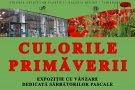 Culorile Primaverii @ Expozitie colectiva cu vanzare la Helios