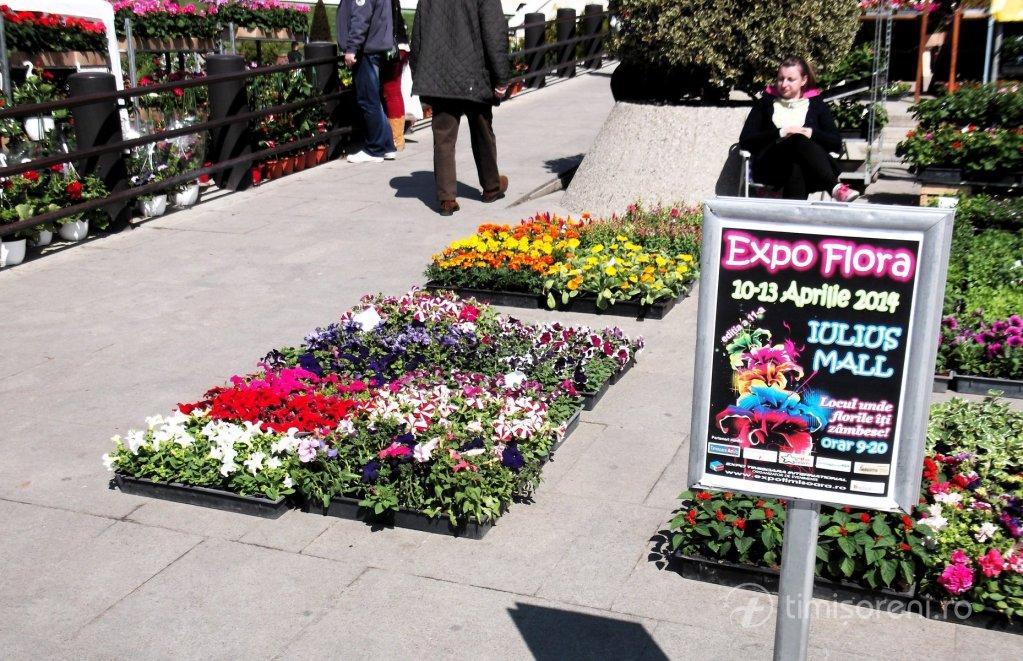 Expo Flora - aprilie 2014