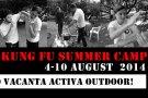 Kung Fu Summer Camp