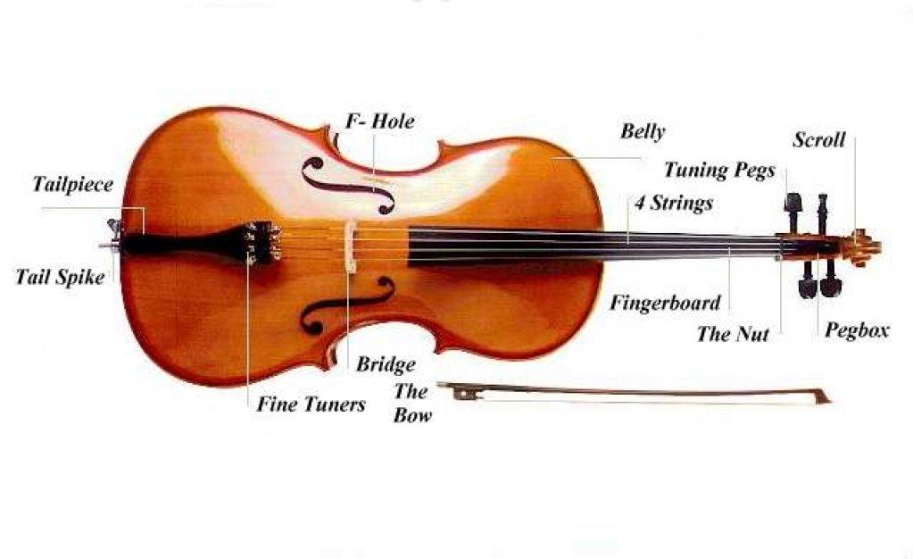 dirjior, formez orchestre , coruri