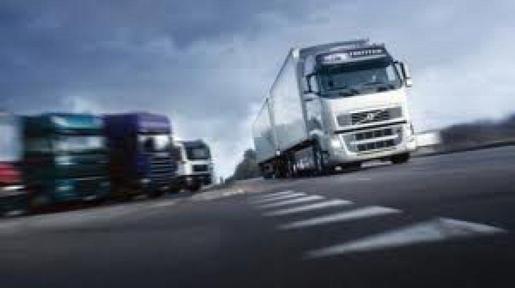 Firma transport rutier