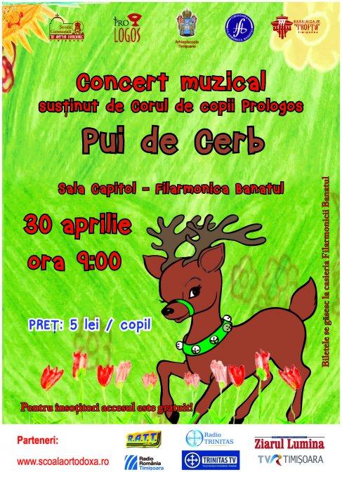 Concert muzical Pui de cerb