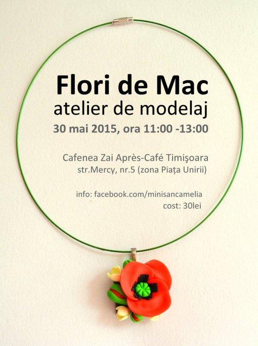 Flori de mac - atelier de modelaj
