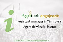 Asistent manager